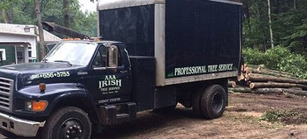AAA Irish Tree Service | Byron Center, Michigan